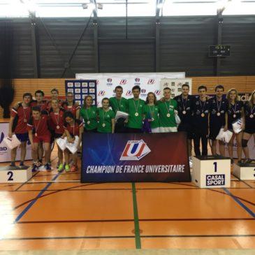 CFE Badminton par équipe